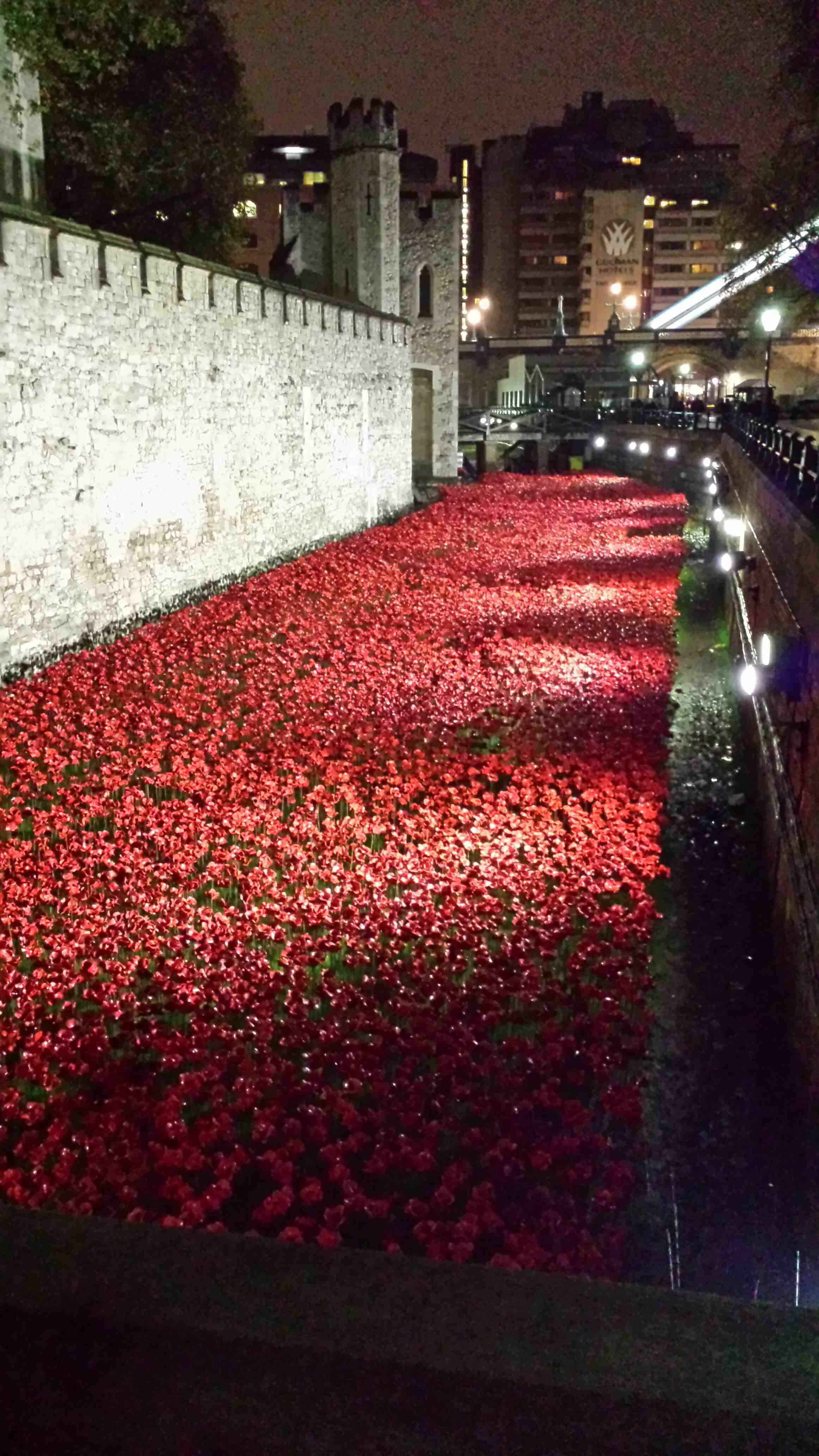 Tower mote filled with poppies.